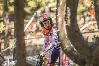 TrialGP17_r3_race_2194_ps